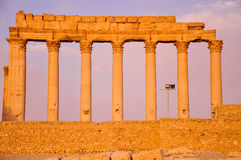 Ancient templefield of Palmyra. At sunset, Syria Stock Photography