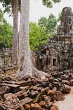 Ancient temples of Angkor Wat, Cambodia Royalty Free Stock Images