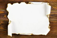 The ancient texture of a scroll of old paper, on the background of the tree of creativity of writing. Vintage paper scroll with. Dark edges, wooden background stock image