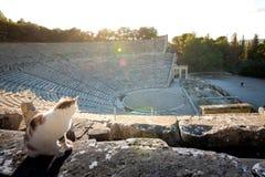 The ancient theater of Epidaurus or `Epidavros`, Argolida prefecture, Peloponnese. stock photo