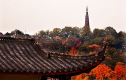 Ancient Tiled Roof Baochu Pagoda West Lake Hangzhou Zhejiang Chi Royalty Free Stock Photo