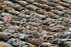 Ancient roof tiles Stock Image