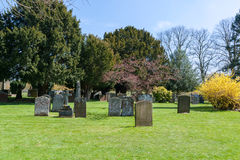Ancient tombstones. Ancient blank tombstones on the old British cemetery Royalty Free Stock Image