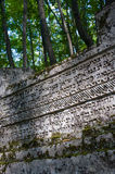 Ancient tombstones in the woods. Karaite Cemetery Balta-Tijmez at Chufut-Kale, the Crimea Royalty Free Stock Image