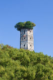 Ancient tower surrounded by lush green trees, Jiangxin Island, Wenzhou, Zhejiang Province, China Royalty Free Stock Photos