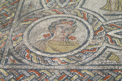 Ancient town Volubilis floor mosaic royalty free stock image