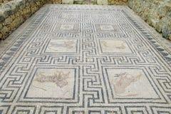 Ancient town Volubilis floor mosaic stock photos