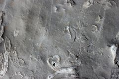 Ancient trace fossil sealife texture on the stone. Mediterranean coast region. Nobody stock photography
