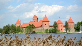 Ancient trakai castle in island surround by galve lake and reed. Move in wind stock video footage