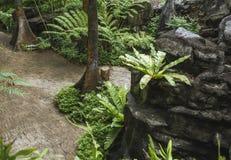 Ancient tropical landscape Stock Image