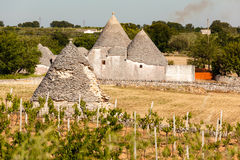 Ancient trulli Stock Images