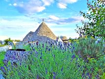 Ancient Trulli, traditional very old houses with lavender and other aromatic plants. In Puglia, Italy royalty free stock photos
