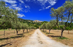 Free Ancient Turrets And Towers Of The Beautiful Medieval French Mountain Village Of Callian Above An Avenue Of Olive Trees Stock Photo - 62115350