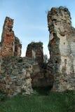 Ancient Ukrainian  castle Royalty Free Stock Photography