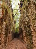 Via Cava, an ancient Etruscan road carved through tufo cliffs in Tuscany. An ancient via cava created by the Etruscans in the countryside of Tuscany near an Stock Photo