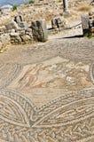 Ancient Volubilis, Morocco Stock Photo
