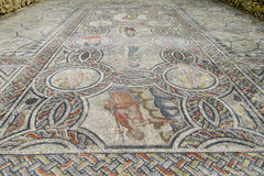 Ancient Volubilis town mosaic on the floor Royalty Free Stock Image