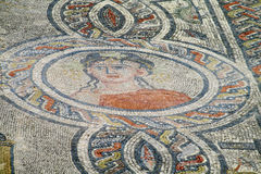 Ancient Volubilis town mosaic on the floor Stock Image