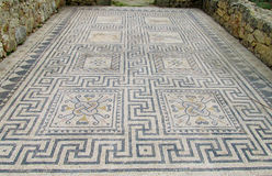 Ancient Volubilis town mosaic on the floor Stock Photos