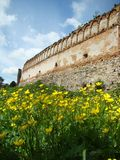 Ancient wall of castle and yellow flowers. In Stare Selo, Lviv region, Ukraine Royalty Free Stock Photos