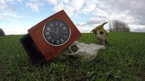 Ancient wall clock box and farm animals skulls on  field, time lapse stock footage