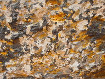 Ancient Wall. Close up in multiple colors Stock Photography