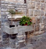 Ancient wall with exposed bricks and marble tanks containing vases with plants Royalty Free Stock Photo