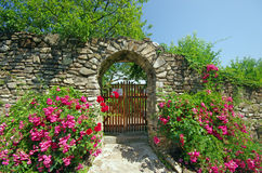 Ancient wall with flowers. (Humor Monastery in Moldavia Stock Photos