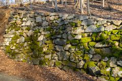 An ancient wall made of moss-covered stones alongside a small forest path royalty free stock image