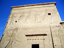 Ancient wall of Philae Temple Stock Images