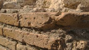 Ancient wall and sunlight. Damaged bricks and cement. Architecture of old world stock video footage