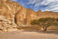 Ancient walls of a canyon stock image
