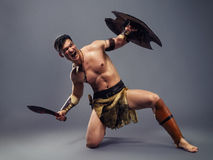 Ancient warrior Royalty Free Stock Photo