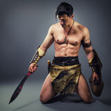 Ancient warrior Stock Images
