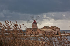 Ancient windmill in the salt pans of Marsala Sicily Stock Photo