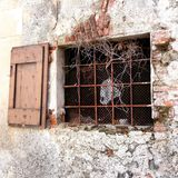 Ancient window with bars and vines Stock Photography