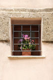 Ancient window with iron grating and flowers Stock Photo