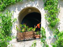 Ancient window in Italy Stock Image