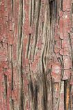 Ancient Wood Pillar Texture. Close up of an ancient painted wood pillar revealing it`s cracked surface texture Royalty Free Stock Photography