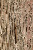 Ancient Wood Pillar Texture. Close up of an ancient painted wood pillar revealing it`s cracked surface texture Stock Image