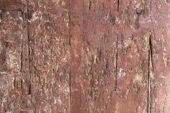 Free Ancient Wooden Door Texture Stock Photography - 32668002
