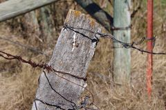 Ancient wooden fencepost with barbed wire and lichen Royalty Free Stock Image