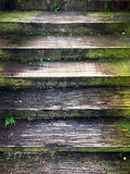 Ancient wooden staircase Stock Images