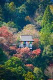 Ancient wooden temple with autumn foliage colors at the mountain. Of Arashiyama, Kyoto, Japan Royalty Free Stock Photography
