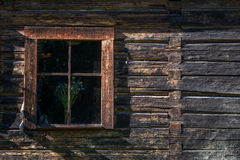 Ancient wooden window with flower Stock Image