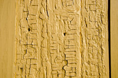 Ancient yellow wooden wall background Royalty Free Stock Photo