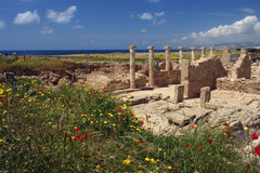 Ancients culumns in Paphos Stock Photography