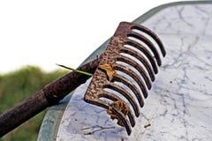 Ancinho de jardinagem, detalhe Imagem de Stock Royalty Free
