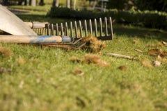 Ancinho na grama Fotos de Stock