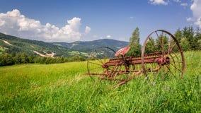 Ancinho vermelho em um campo nas montanhas Fotografia de Stock